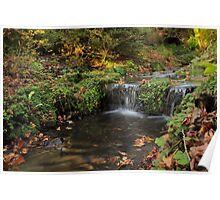 Falling waters of a picturesque fall scene Poster