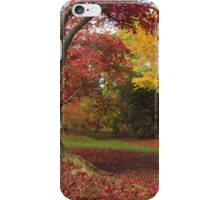 All the colors of the fall iPhone Case/Skin