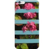 Panicles in the Pokey  iPhone Case/Skin