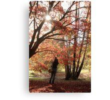 Autumn capture Canvas Print