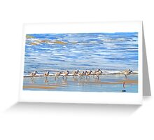 We're following the leader... Sandpipers in Goleta Beach California Greeting Card