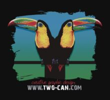 Toucans by Colin Martin