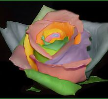 Petals of color by CJ30