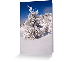 Covered Greeting Card