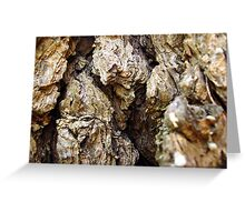 TEXTURES FROM NATURE Greeting Card