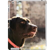 Belle - Chocolate Lab iPad Case/Skin