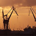cranes at sunset by imagegrabber