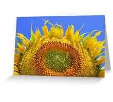 Sun Bather Greeting Card