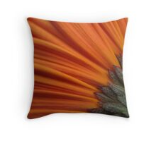 ~ Colours of Sunset ~ Throw Pillow