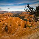 Bryce Canyon by Nick Johnson