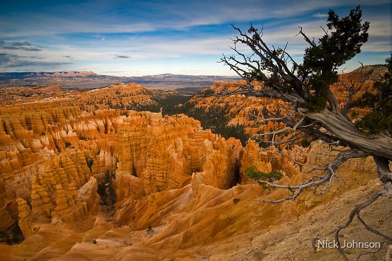 Bryce Canyon by Nick Johnson
