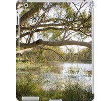 Dunkeld Community Park, Dunkeld, Victoria iPad Case/Skin