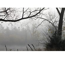 Scenes of Fall Mist Photographic Print