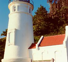 Heceta Head Lighthouse by Marylamb