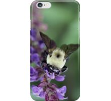 I love pollen! :) iPhone Case/Skin