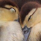 Sweet Dreams by BethBernier