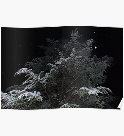 Snow Fall Poster