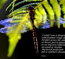 Dragonfly poem. by piclex