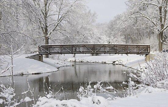 snowy bridge by jude walton