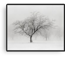 The Sound of Snow Canvas Print