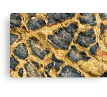Blue and Yellow Rocks #1 Canvas Print