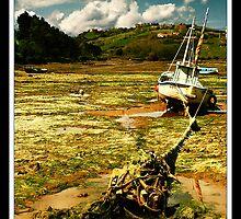 Muddy water by BaciuC