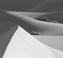 Death Valley Dunes by Ray Rozelle