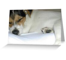 Sleeping Puppy. Greeting Card