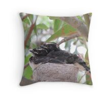 Sweet Willy Wagtail Chicks, almost ready to fly. 'Arilka' Adelaide Hills. Throw Pillow