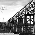 Old Gundagai Bridge by GailD