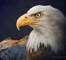 bald eagle portrait with mountain by R Christopher  Vest