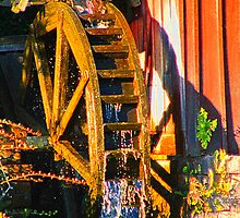 Water Wheel by Judy Gayle Waller
