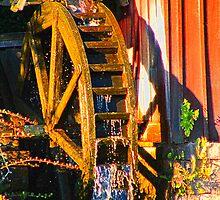 Water Wheel by Judy Gayle Waller