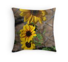 Sun Flower Patch Throw Pillow