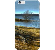 Atlanta Lake iPhone Case/Skin