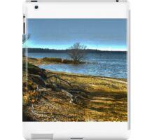 Atlanta Lake iPad Case/Skin