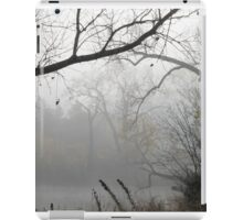 Scenes of Fall Mist iPad Case/Skin