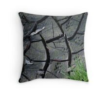 After the flood ... Throw Pillow