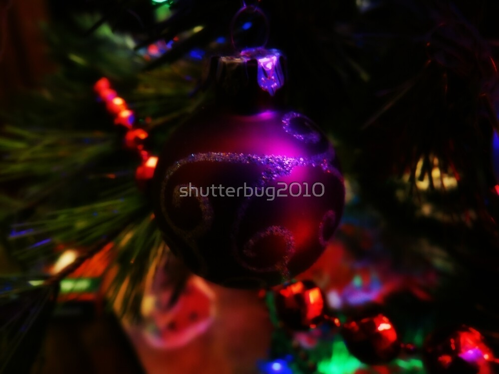 Visions of Sugar Plums by shutterbug2010