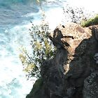 Maui Cliffs by pinklilypress