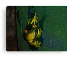 Kermit Impression Canvas Print