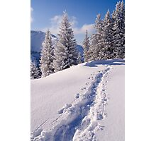 Winter Hike Photographic Print