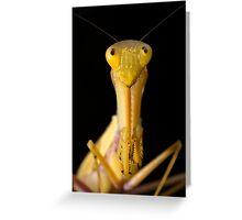 Yellow Mantis Greeting Card