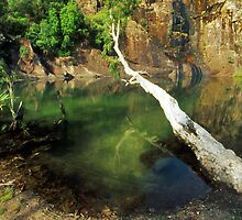 the plunge pool - NT by Tony Middleton