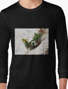 Windswept  Long Sleeve T-Shirt