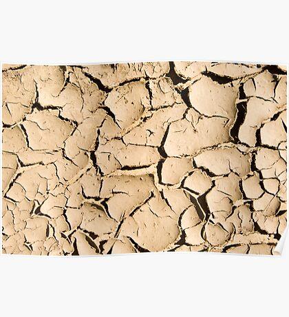 Mud Cracks Poster