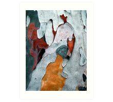 Paper Bark #1 Art Print