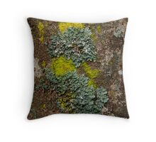 Lichen Covered Bark Throw Pillow