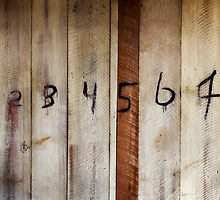 Numbers 1-8 by David Librach - DL Photography -