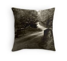 Swann Mill Road Throw Pillow